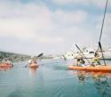 harborkayak